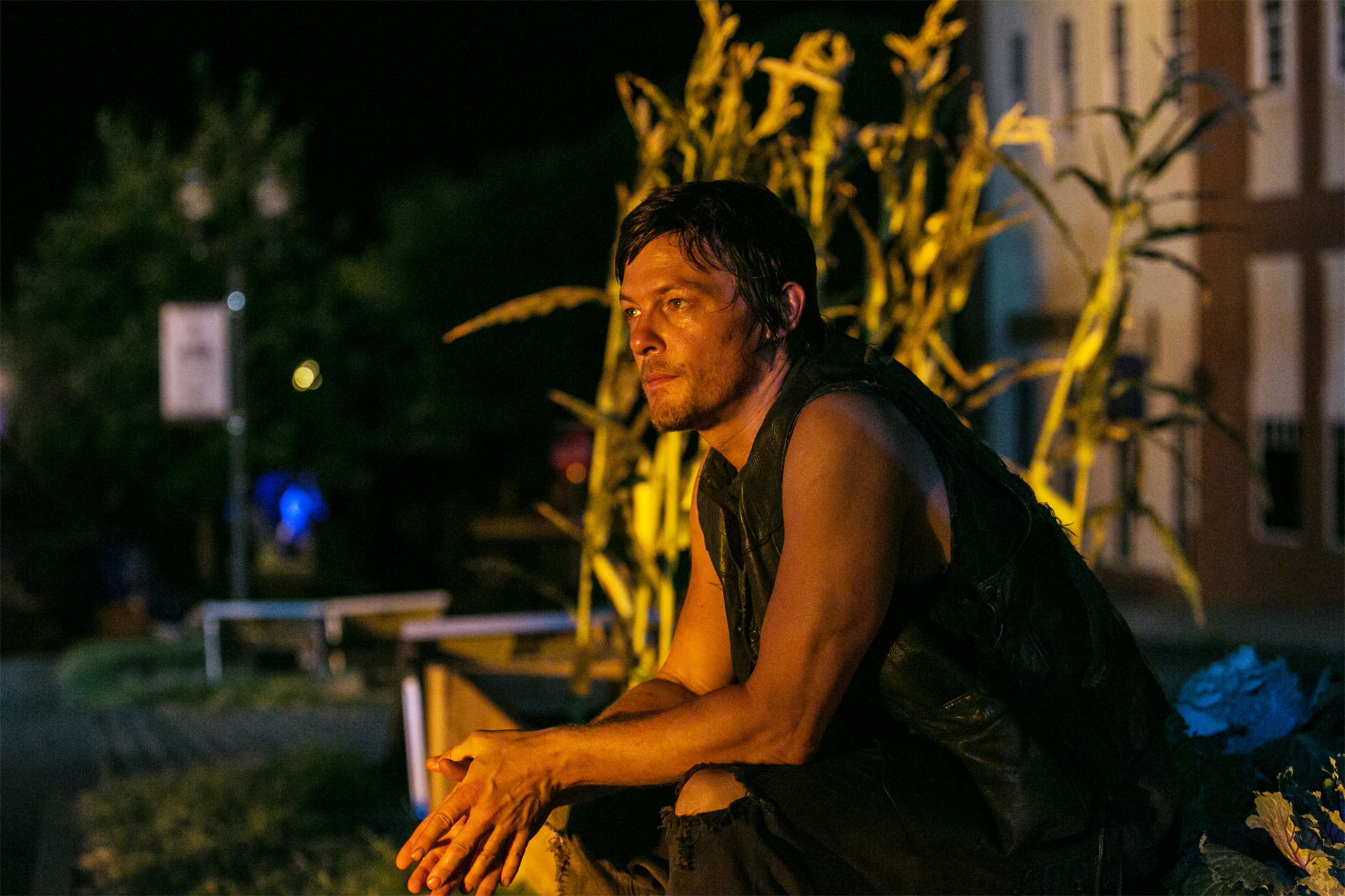 daryl the walking dead 13429