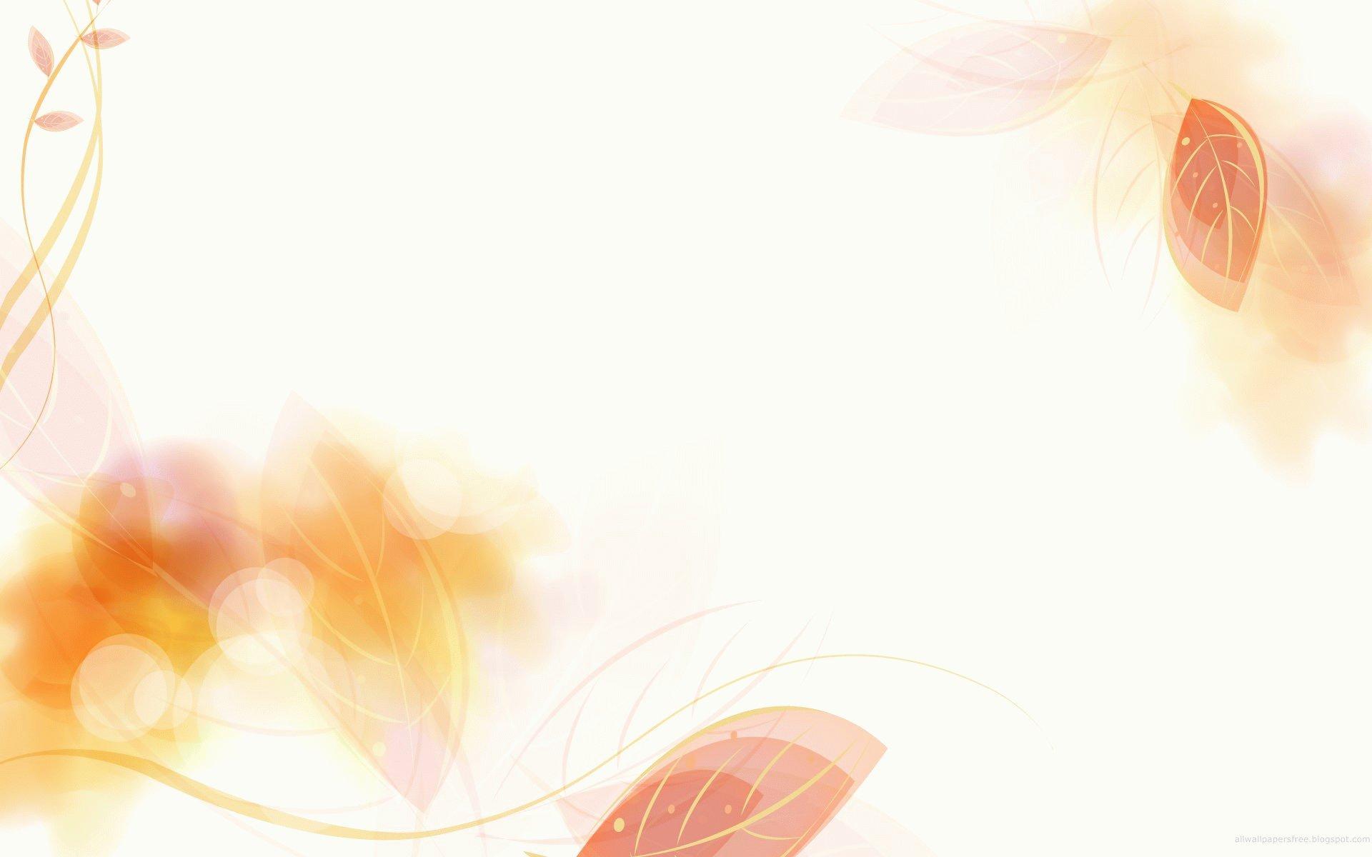 elegant border wallpaper 22056 1920x1200 px hdwallsourcecom