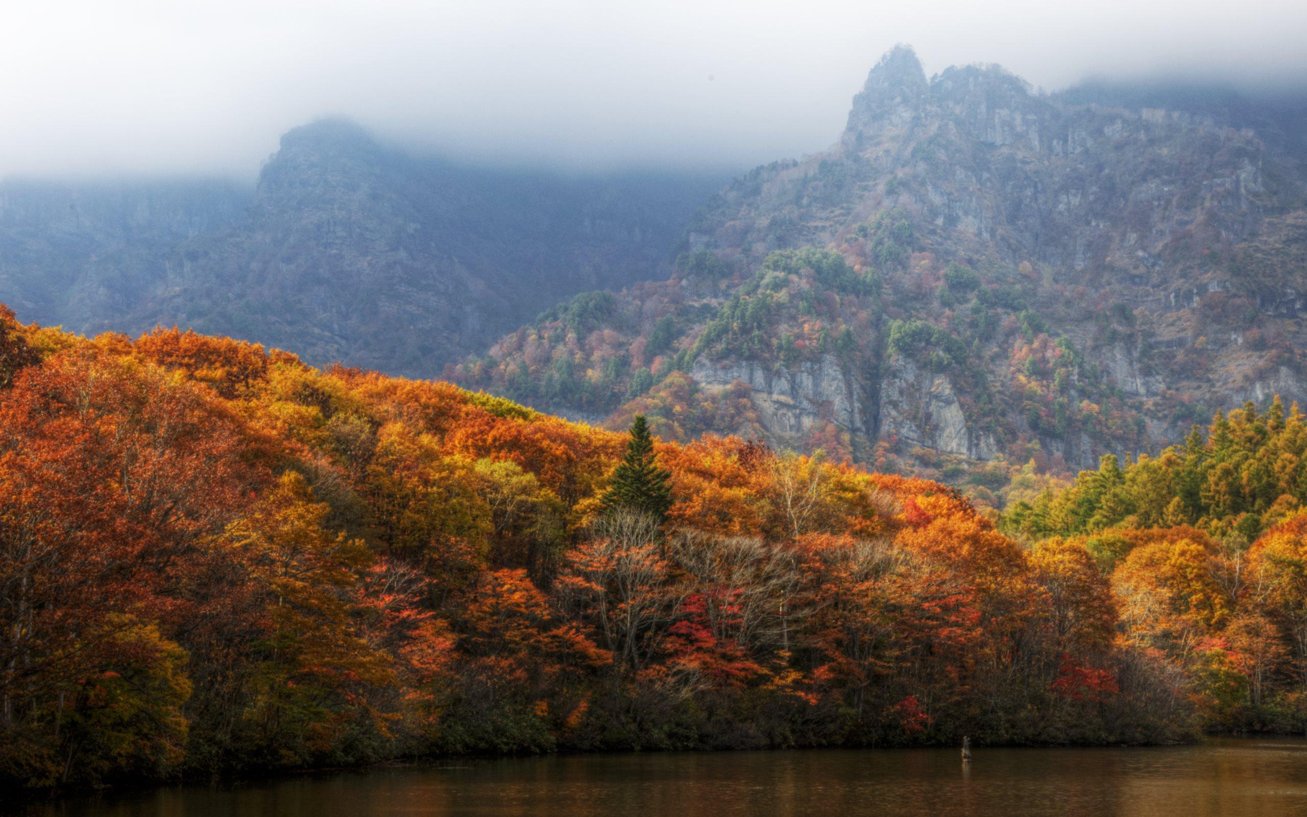 fall scenery 18758