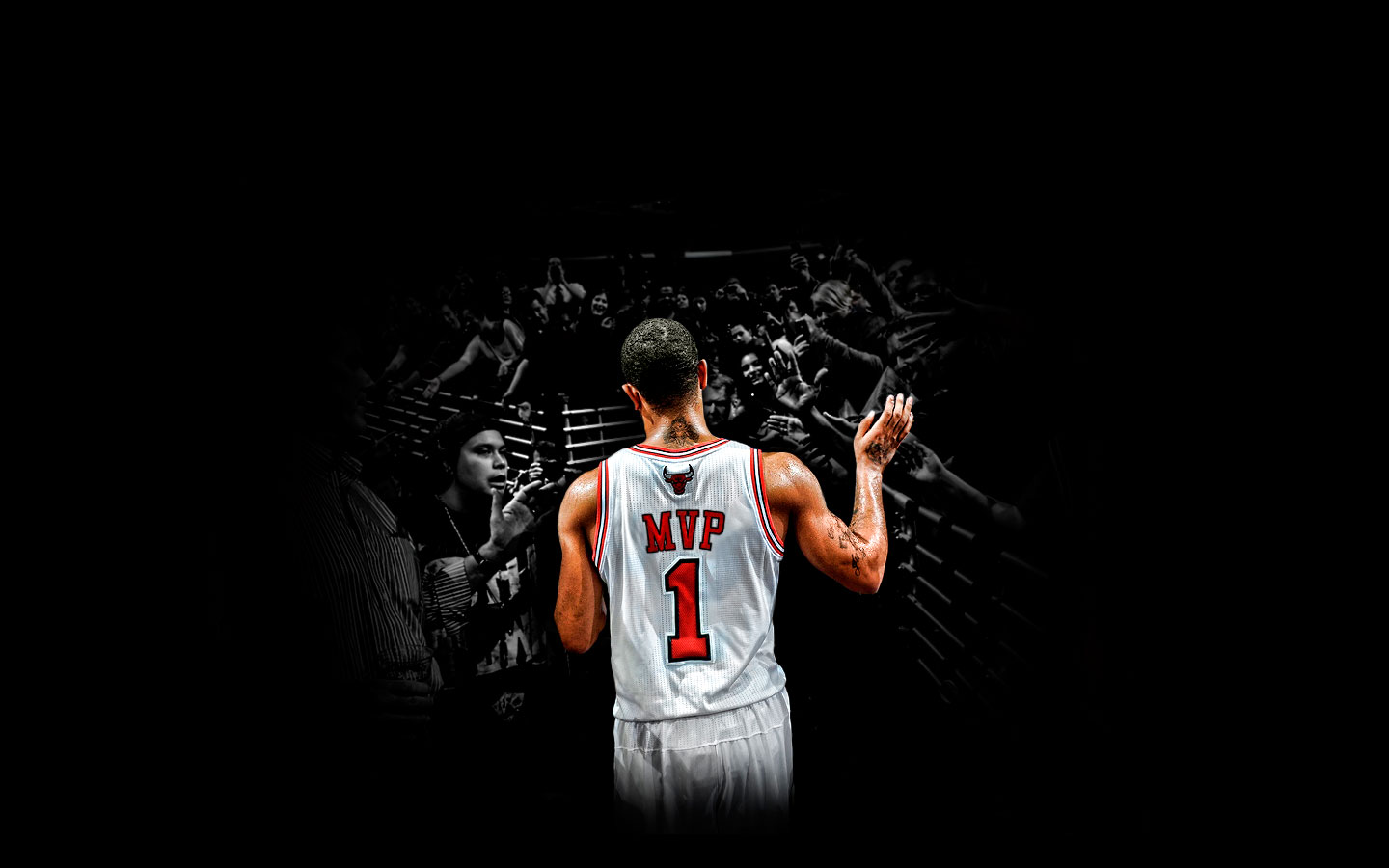 free derrick rose wallpaper 17066