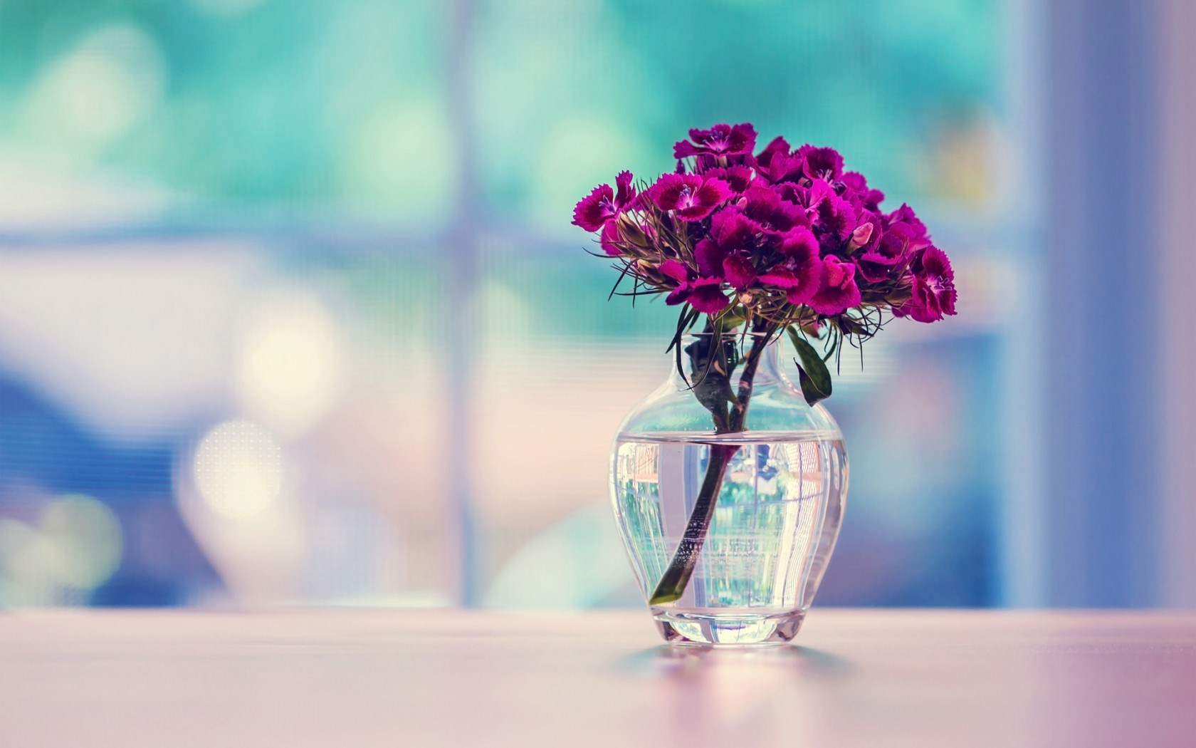 lovely vase pictures 39289