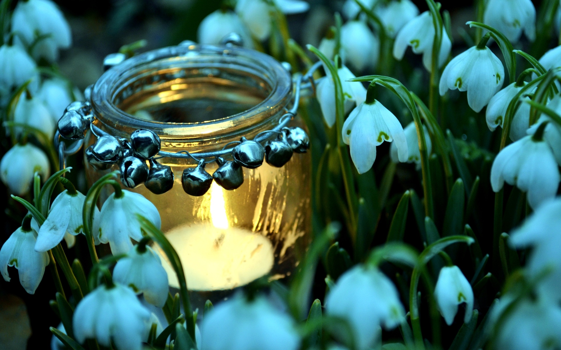 Pretty jar wallpaper 39478 1920x1200 px for Pretty wallpaper for walls
