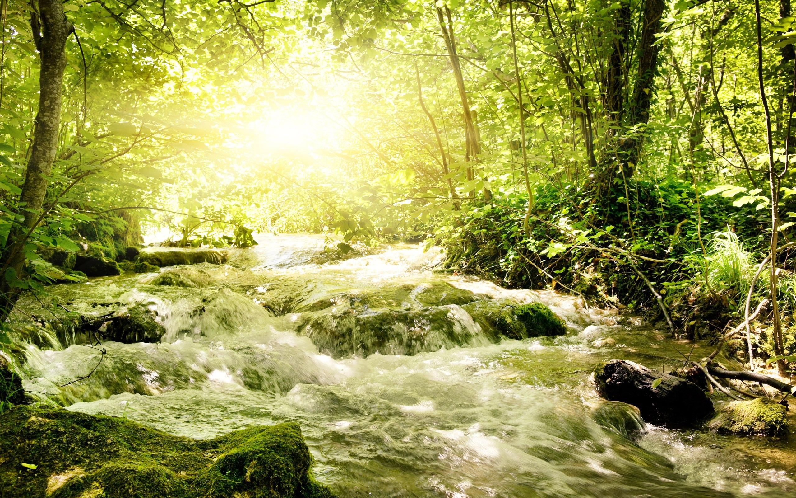 pretty stream wallpaper 31751