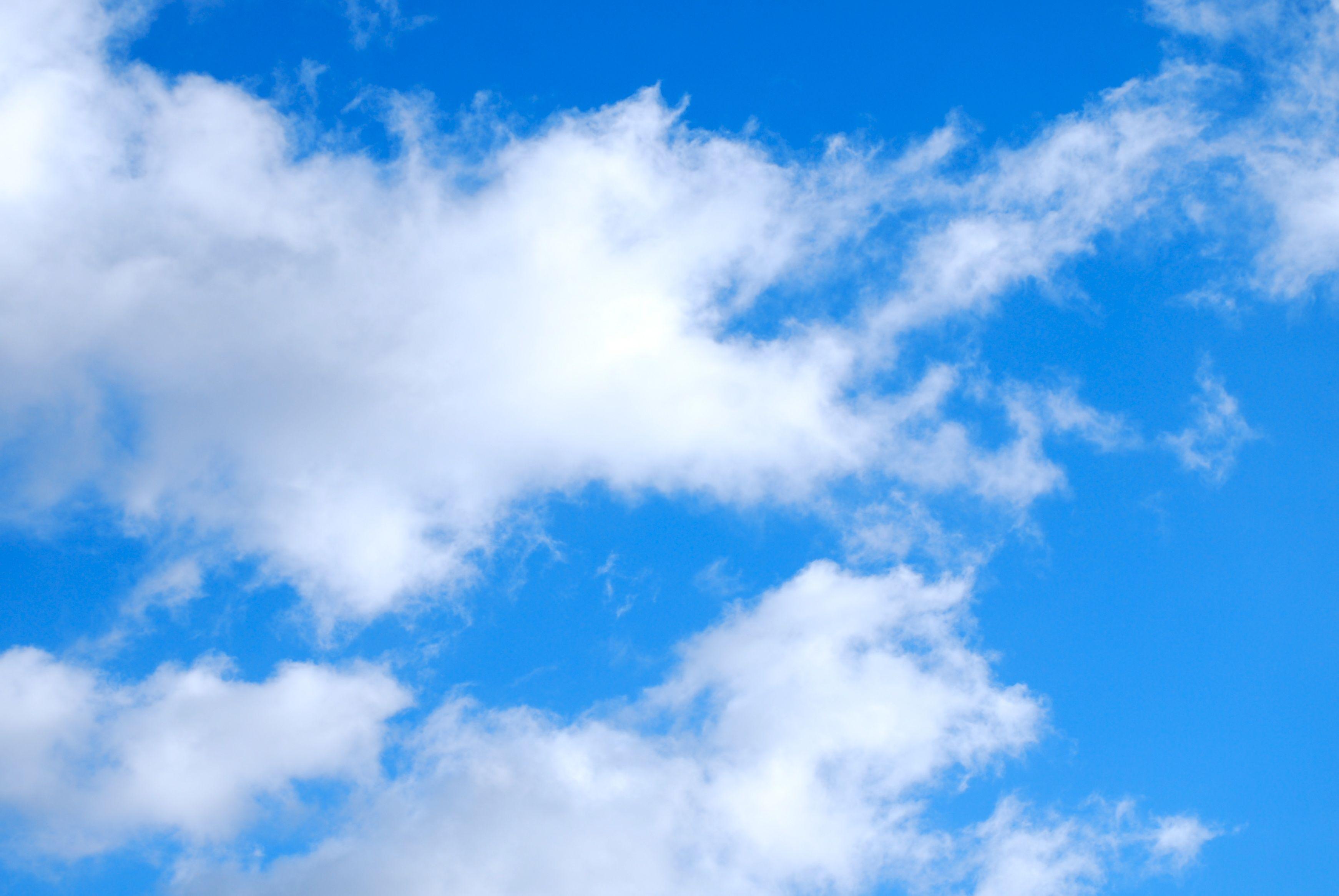 sky 13069
