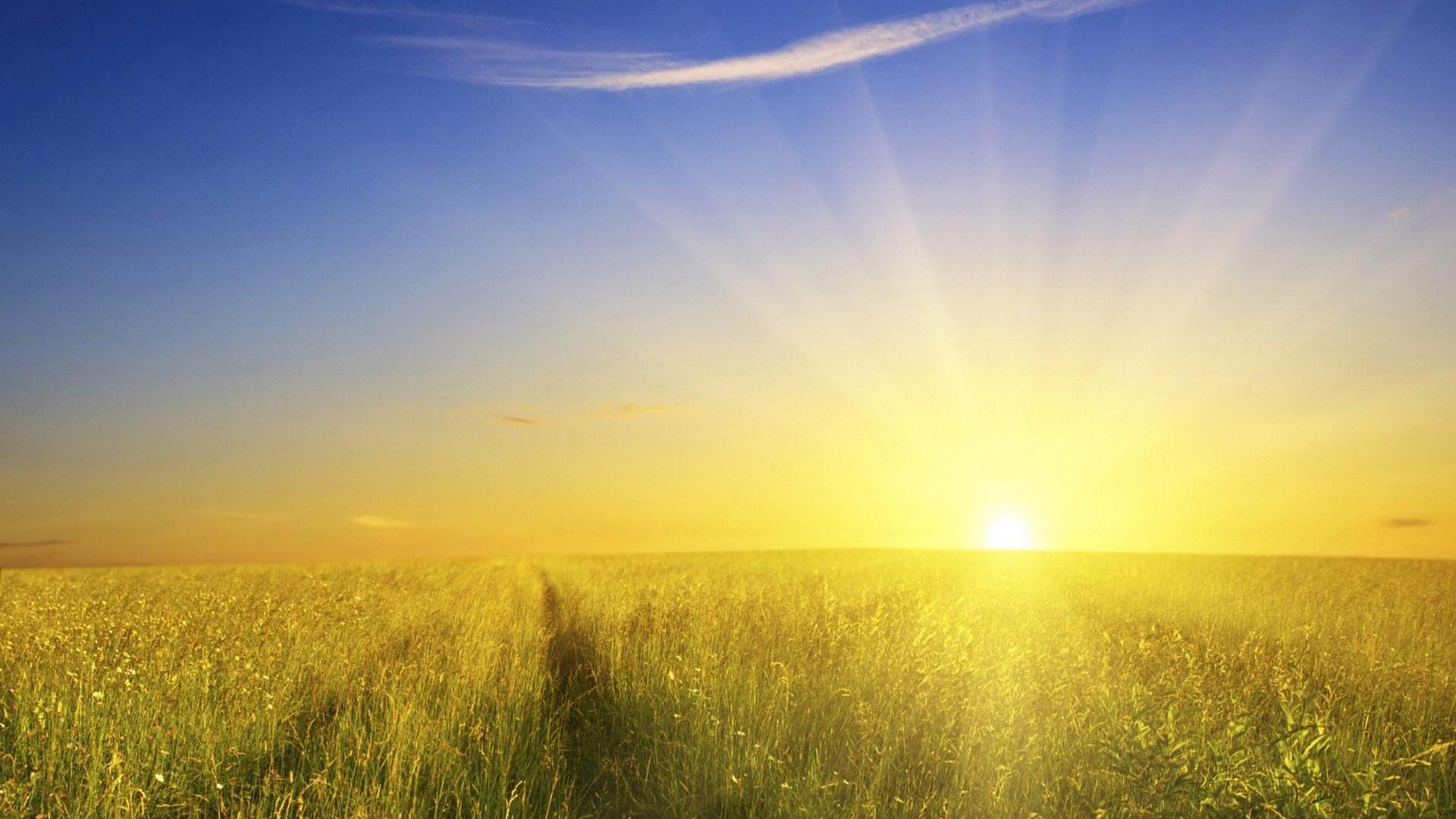 sunshine background 26240 1920x1080 px hdwallsource