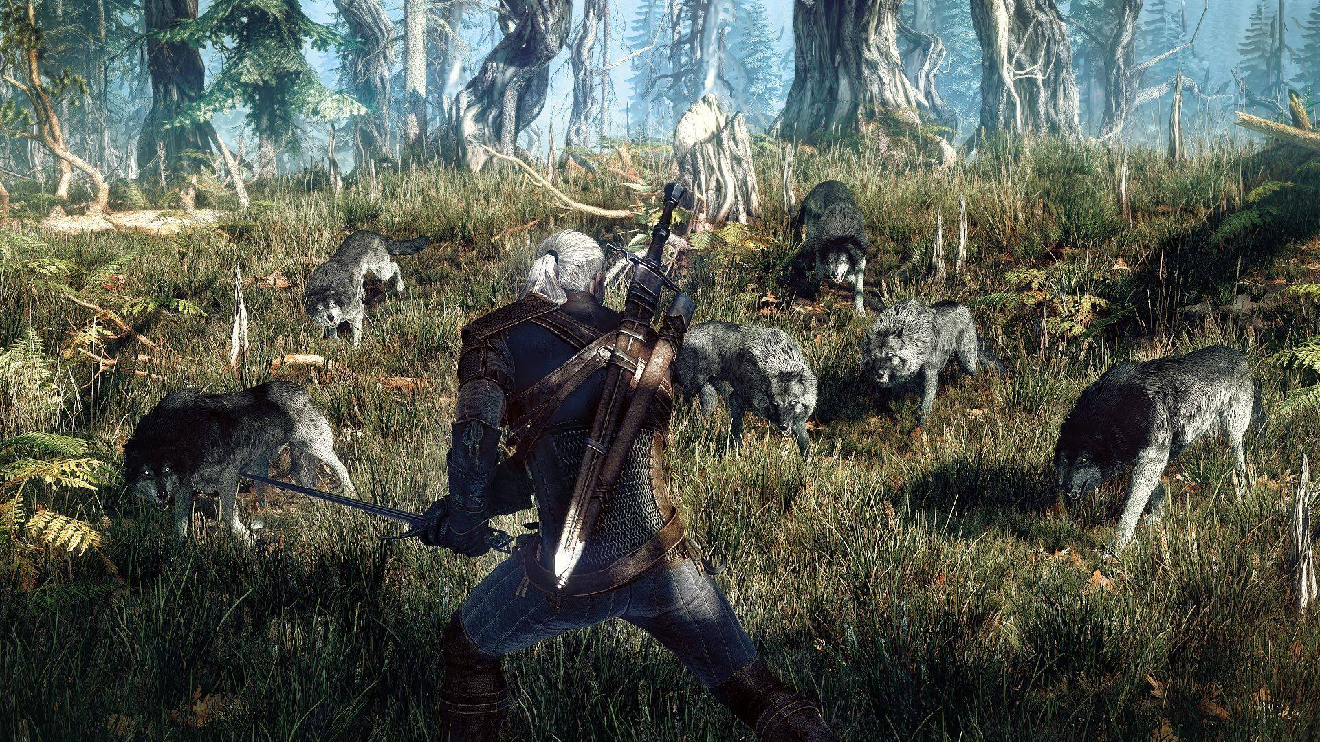 the witcher 42025