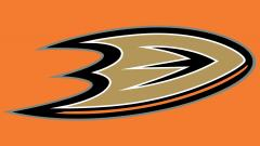 Anaheim Ducks Wallpaper 15352