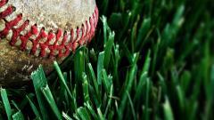 Baseball Macro HD 39441