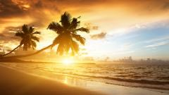 Beach Sunrise Wallpaper 28971