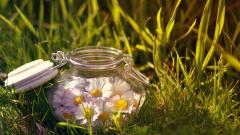 Beautiful Jar Wallpaper 39473