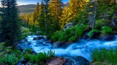 Beautiful Stream 31757
