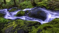 Beautiful Stream Wallpaper 31734