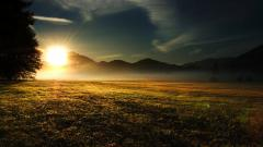 Beautiful Sun Rays 29812