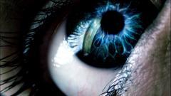 Blue Eyes Wallpaper 28559