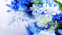 Blue Flowers 14114