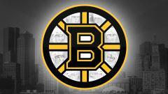 Bruins Wallpaper 8613