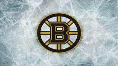 Bruins Wallpaper 8615