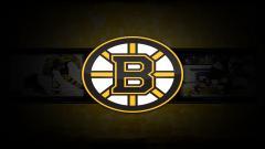 Bruins Wallpaper 8617
