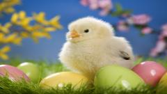 Cute Easter Pictures 26842