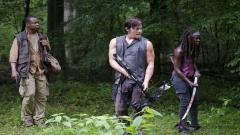 Daryl The Walking Dead 13424