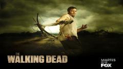 Daryl The Walking Dead 13427