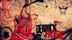 Derrick Rose 17076