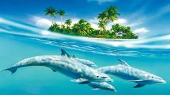Dolphins Wallpaper 14684