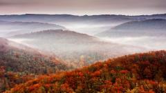 Fall Scenery 18763