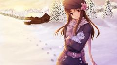 Fantastic Anime Wallpapers 41331