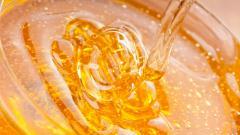Fantastic Honey Wallpaper 44052