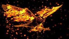 Fire Wallpaper 9228