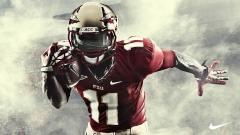 Florida State Wallpaper 20638