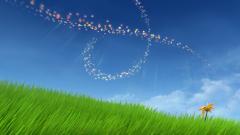 Flower Game 14411