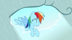 Free Rainbow Dash Wallpaper 16159