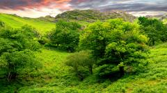 Hills Wallpaper HD 39446