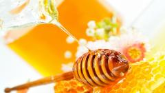 Honey Wallpaper HD 44057