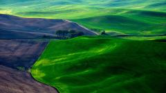 Lovely Hills Wallpaper 39450
