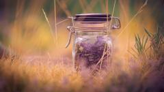 Lovely Jar Wallpaper 39479