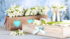 Lovely Table Flowers Wallpaper 40135