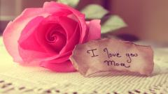 Mothers Day 26404