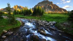 Mountain Stream HD 33687