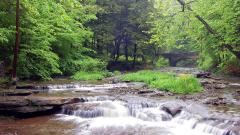 Mountain Stream Wallpaper 33674