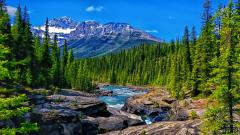 Mountain Stream Wallpapers 33679
