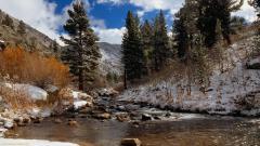 Mountain Streams 33685