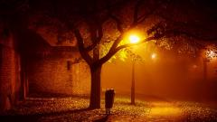Night Photography Wallpaper 33660