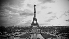 Paris Pictures 22128