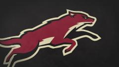 Phoenix Coyotes Wallpaper 15330