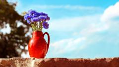 Pretty Vase Wallpaper 39292