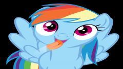 Rainbow Dash 16152