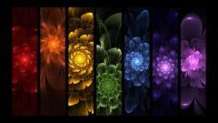 Rainbow Flowers 17365